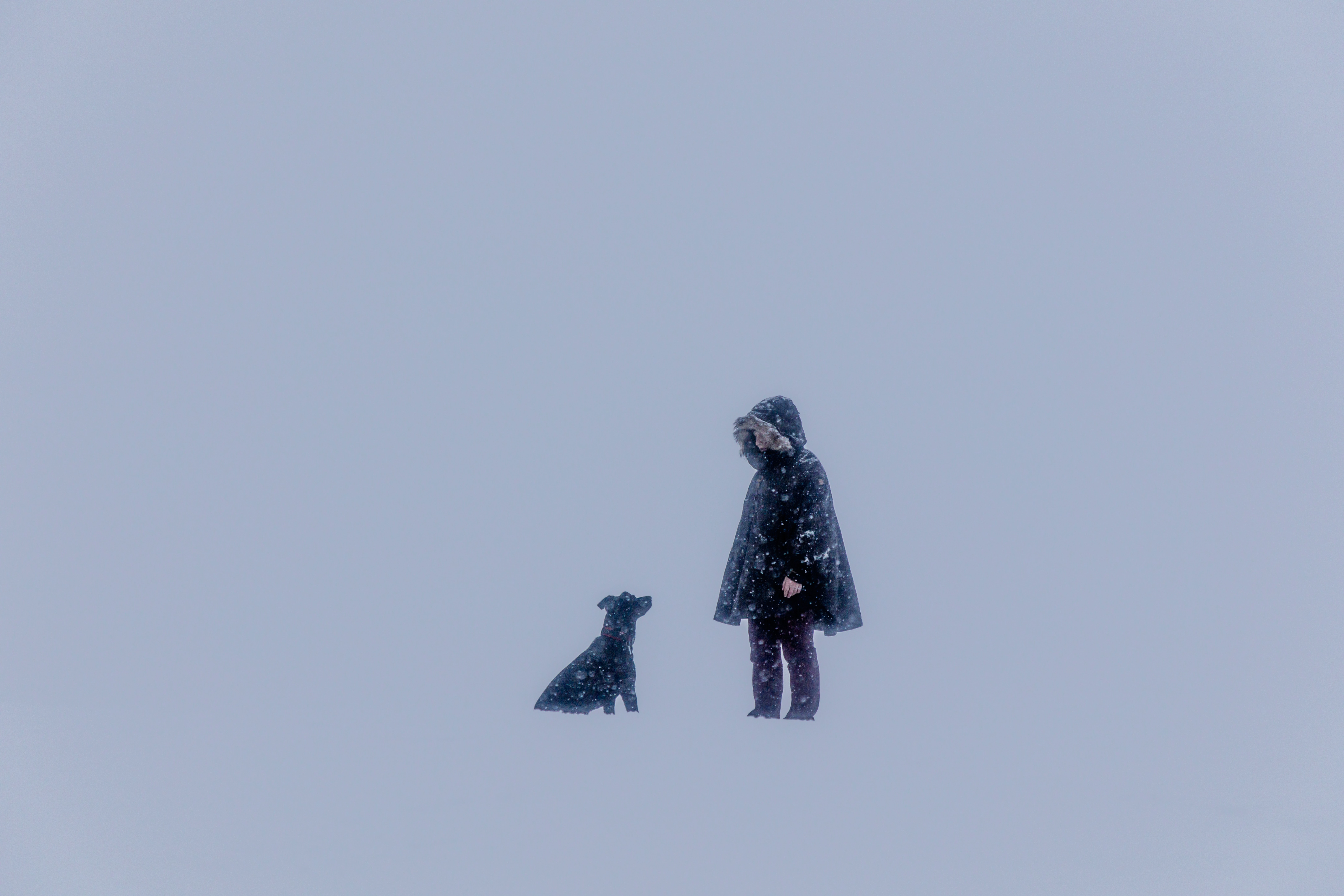 person beside black dog