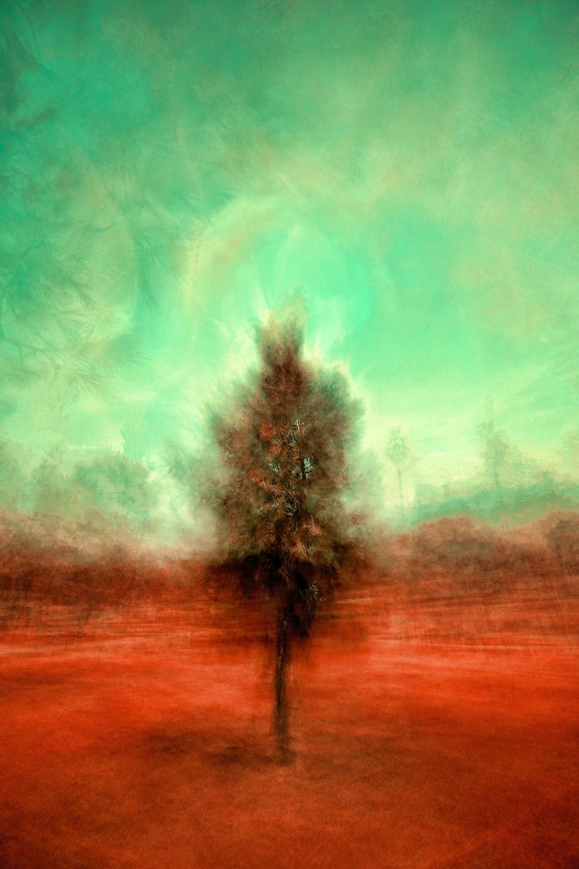 painting of brown tree