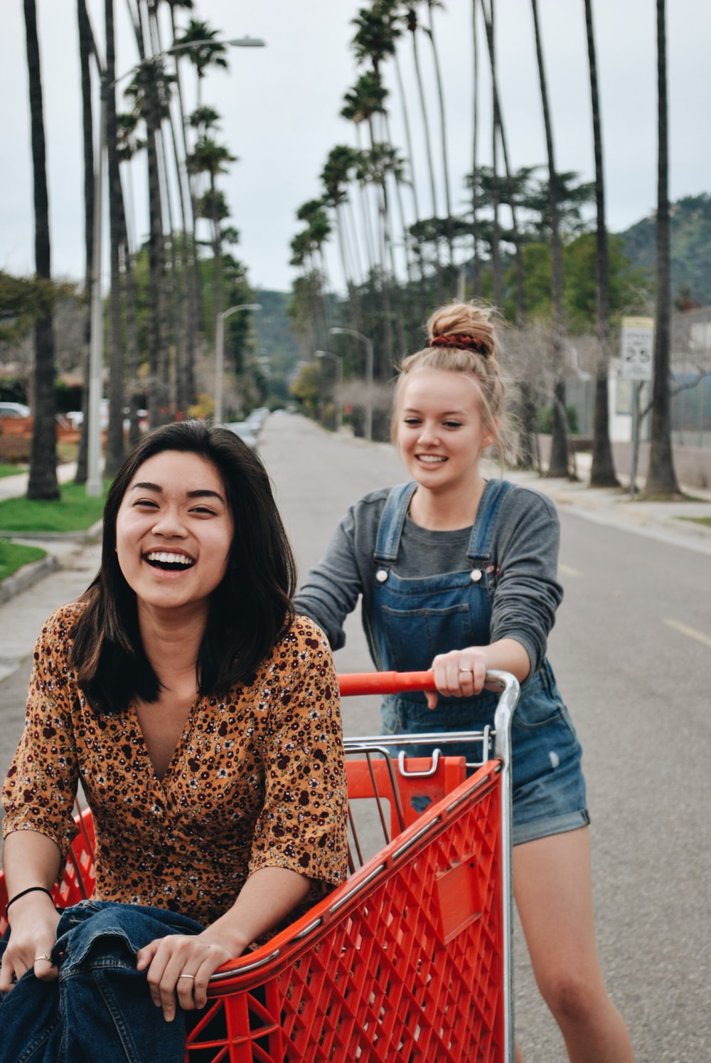 two women riding on shopping cart on road between trees during daytime