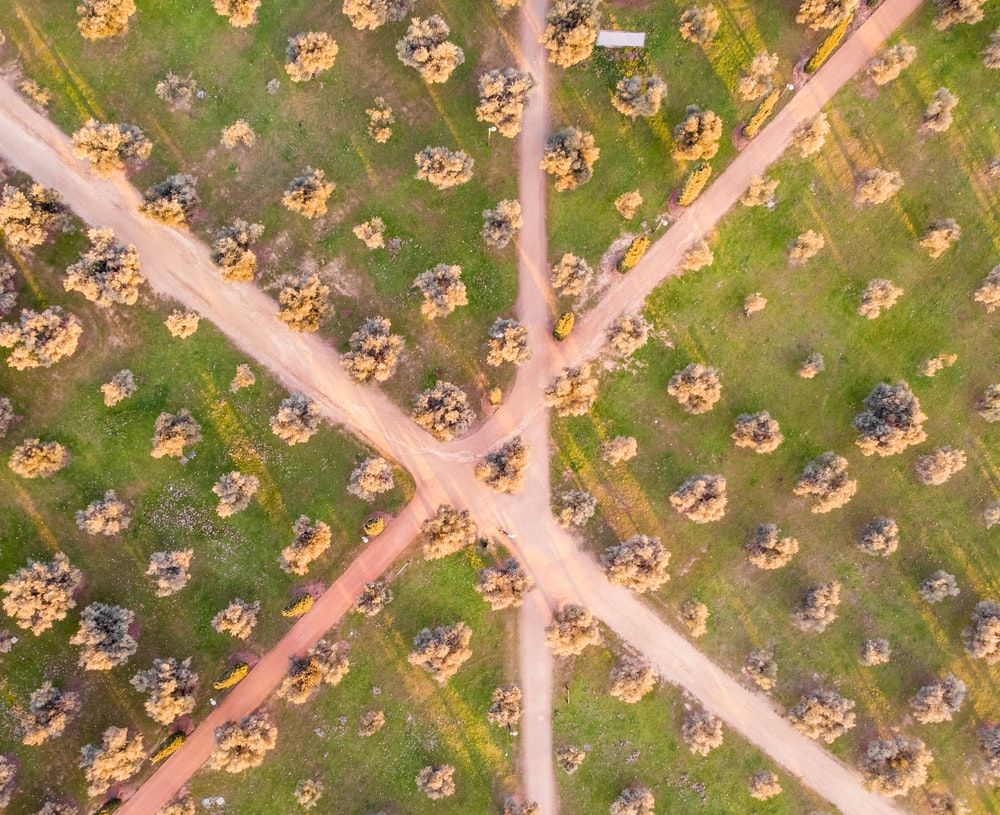 aerial view photography of road between green grass