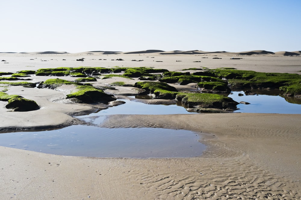 body of water surrounded by gray sand under clear blue sky