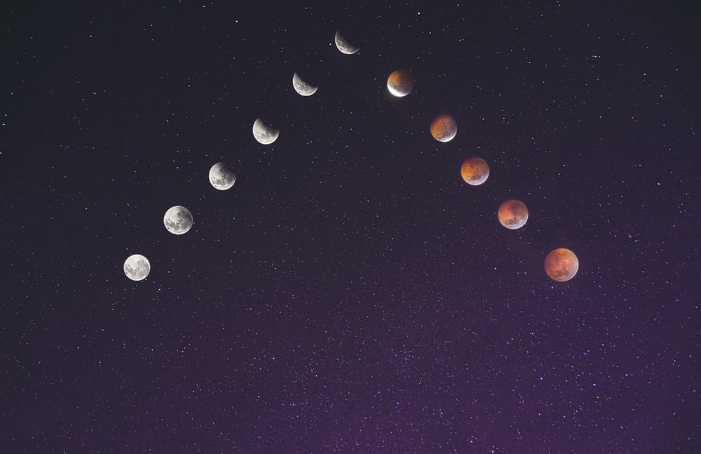 time lapse photography of assorted moon illustration