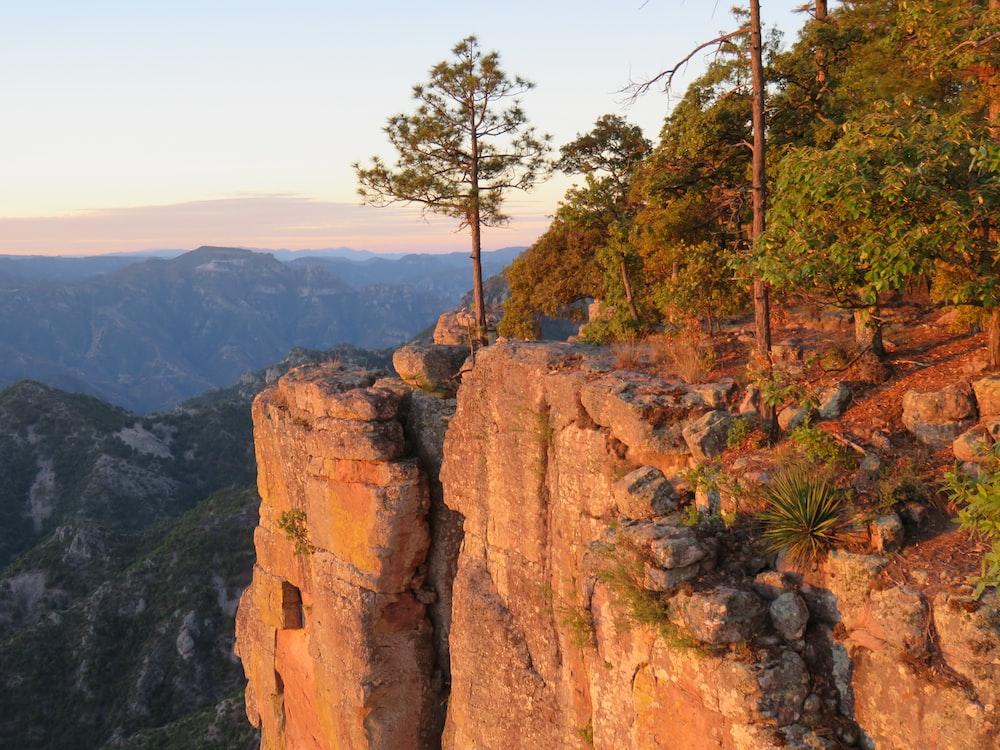 green trees on rocky mountain