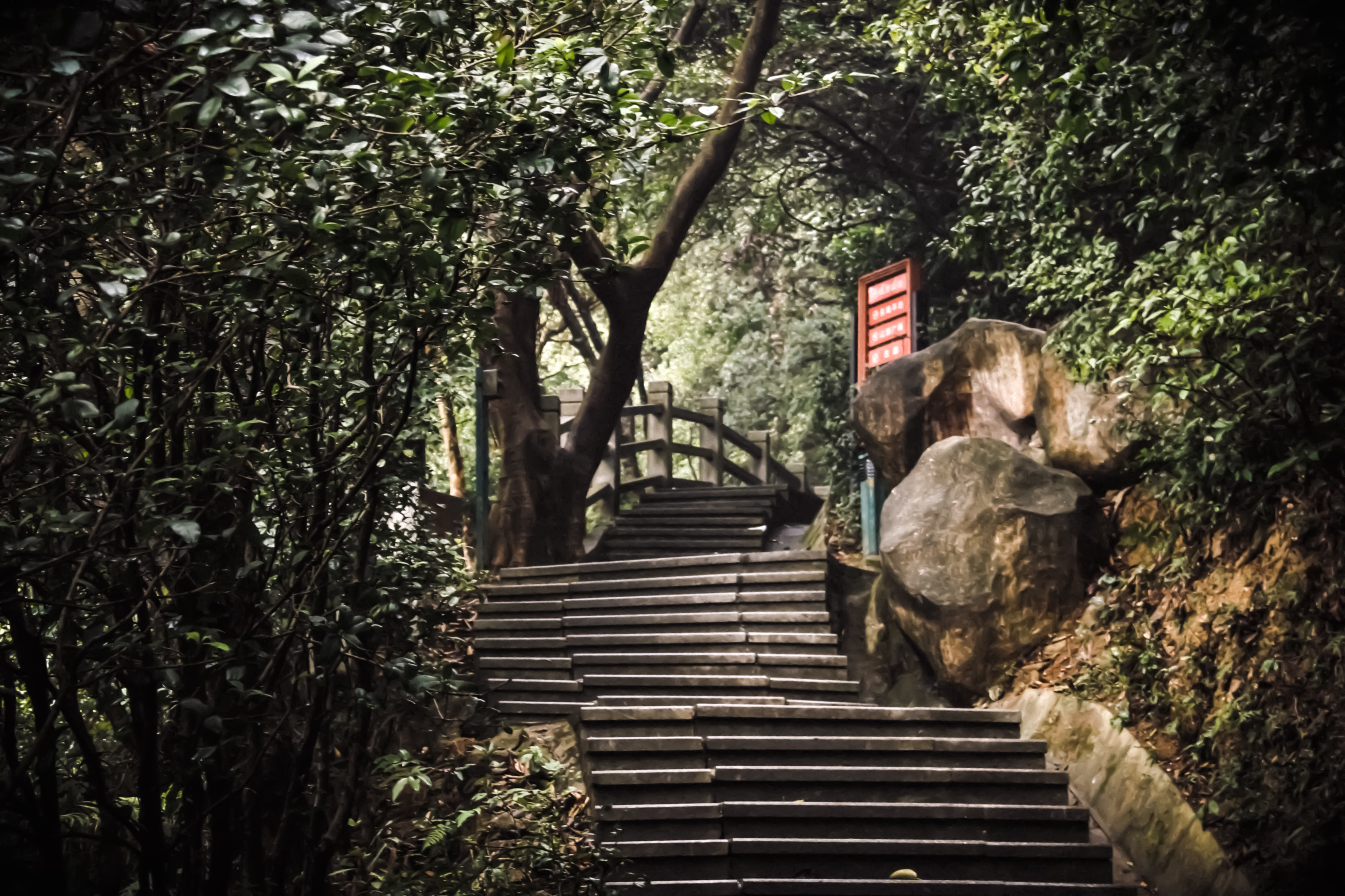 stair with boulder and treeson side