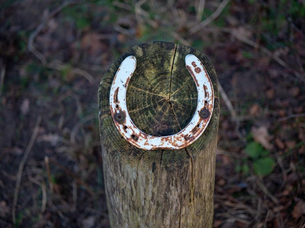 white horseshoe on wood log