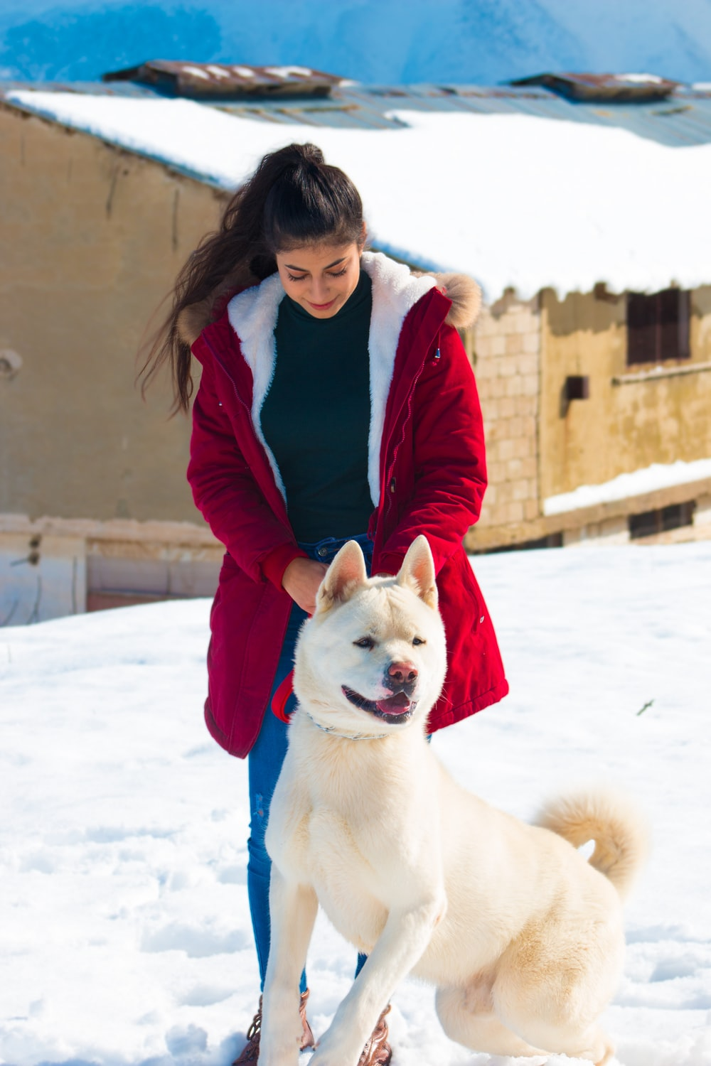 woman holding a Shiba Inu near house during daytime