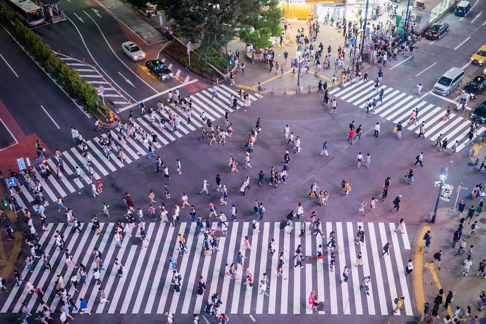 people walking on pedestrian lanes