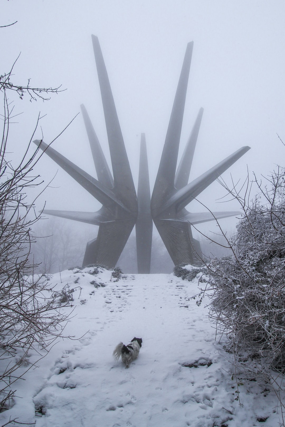 """Built in 1970 by an unknown artist, the brutalist monument celebrates a group of partisan fighters in World War II who battled against the German occupation in the south of Belgrade. During the fighting the battalions lost over 5,000 soldiers but their """"guns of freedom kept shooting. More photos on my Instagram > https://www.instagram.com/valentinsalja"""