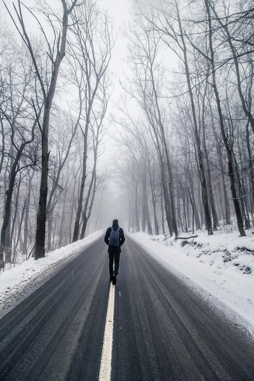 man walking on road between bare trees