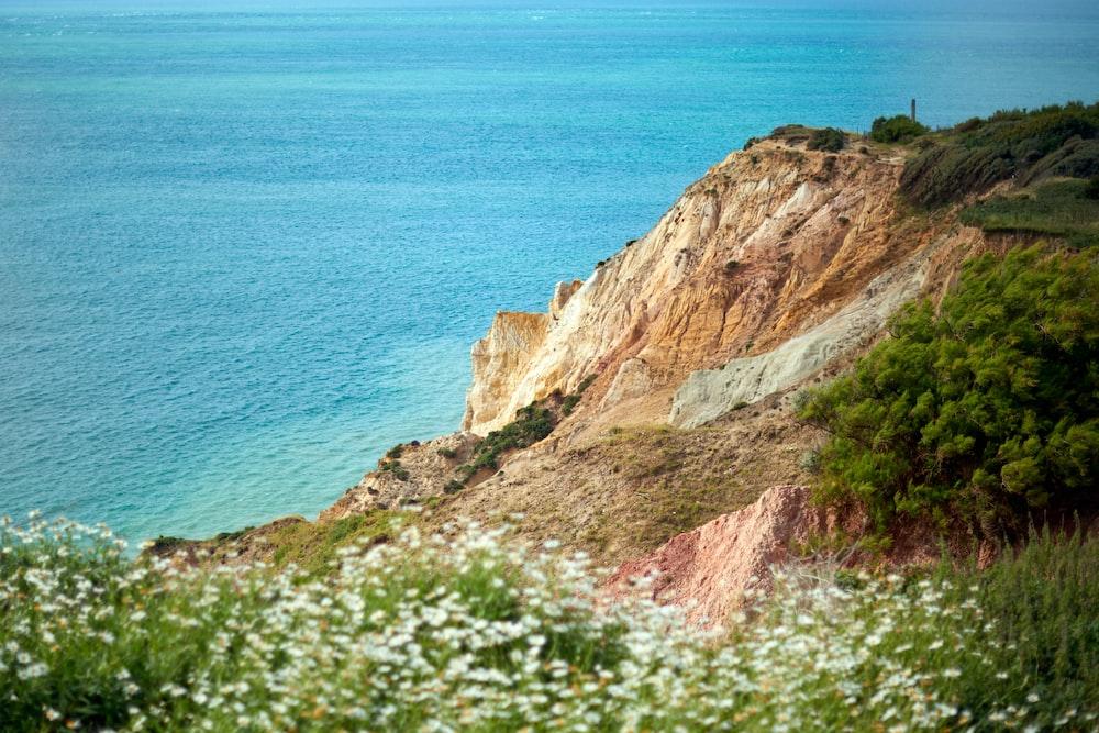 sea beside cliff