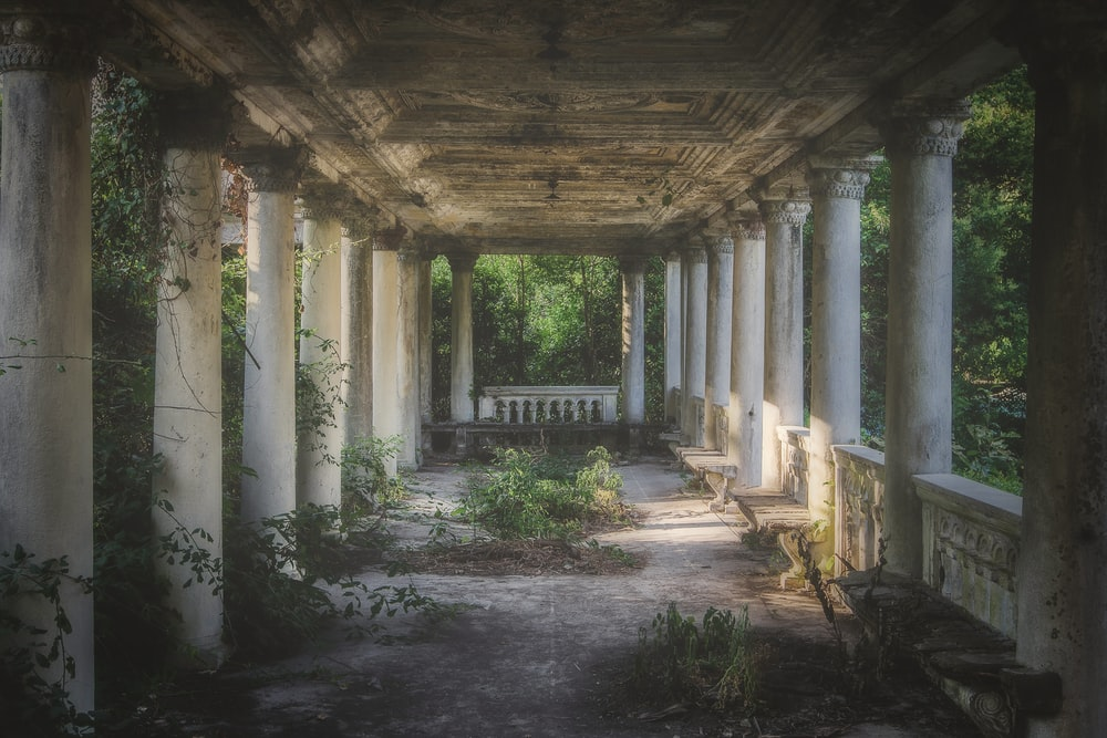 abandoned pillared building surrounded with trees