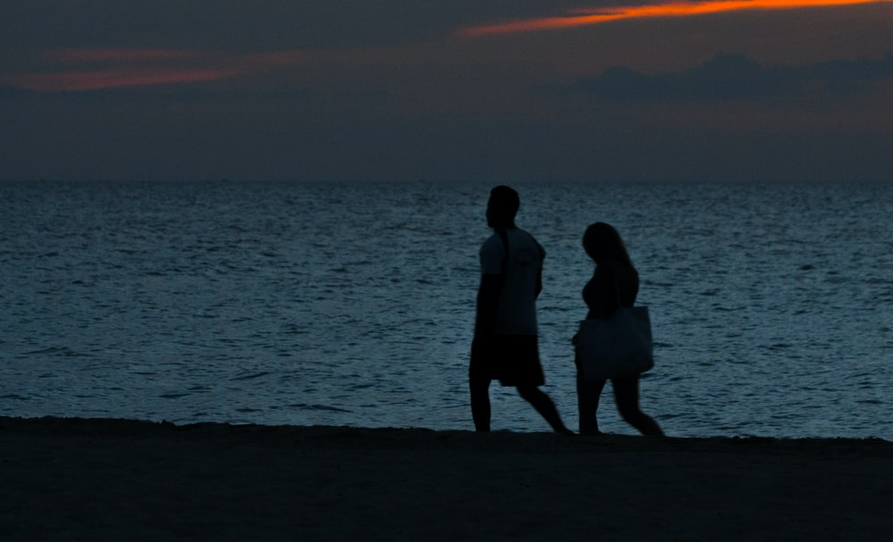 silhouette of two person walking beside beach