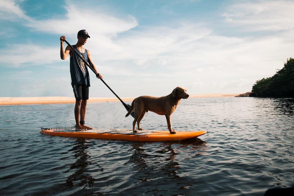 man and dog on paddleboard