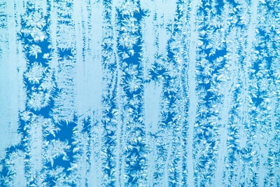 aerial photography of snow covered forest