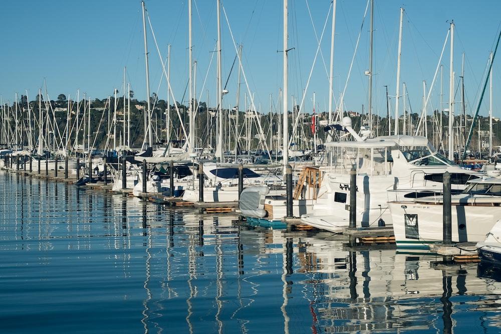 white boat docked under blue sky