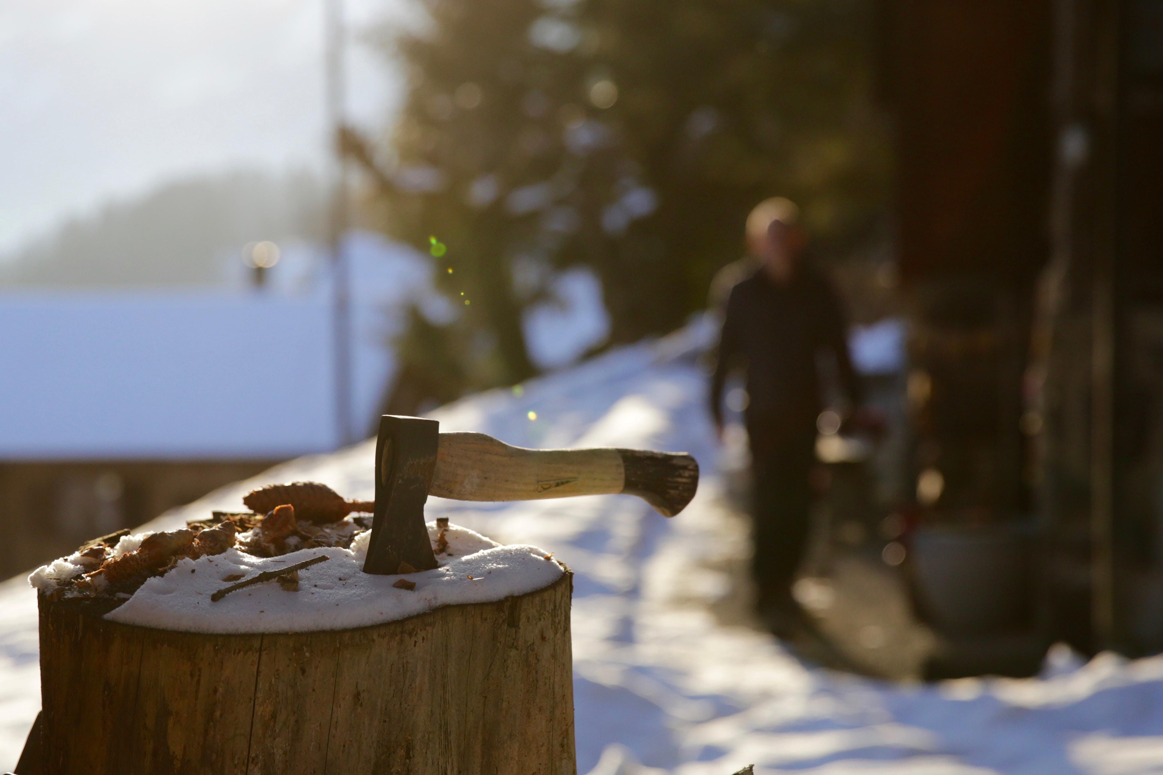 brown ax on drift wood