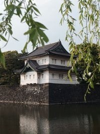 white and brown temple by the river