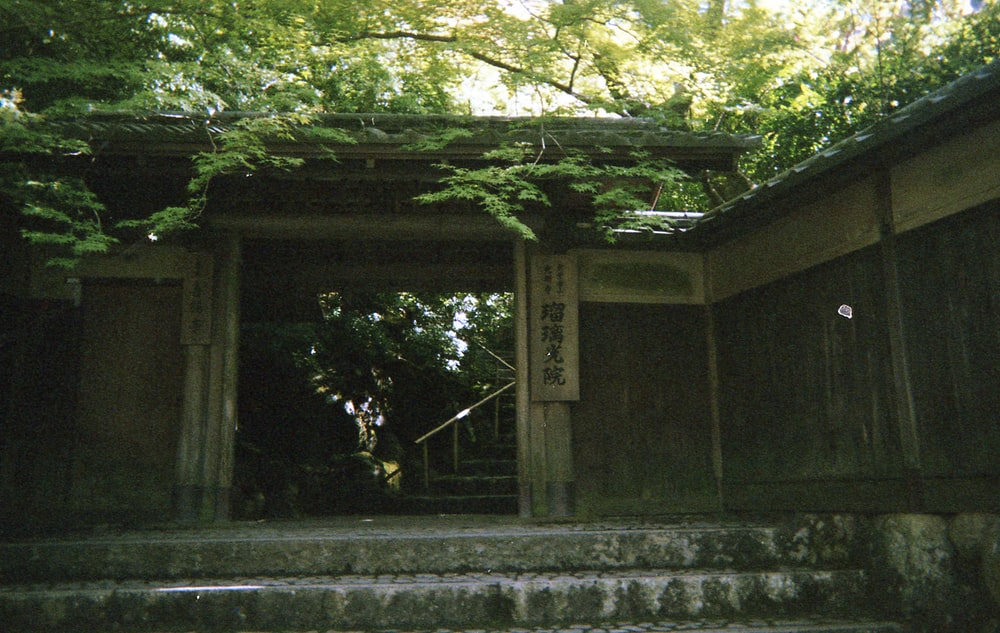 brown wooden wall and gate surrounded by green leaf trees
