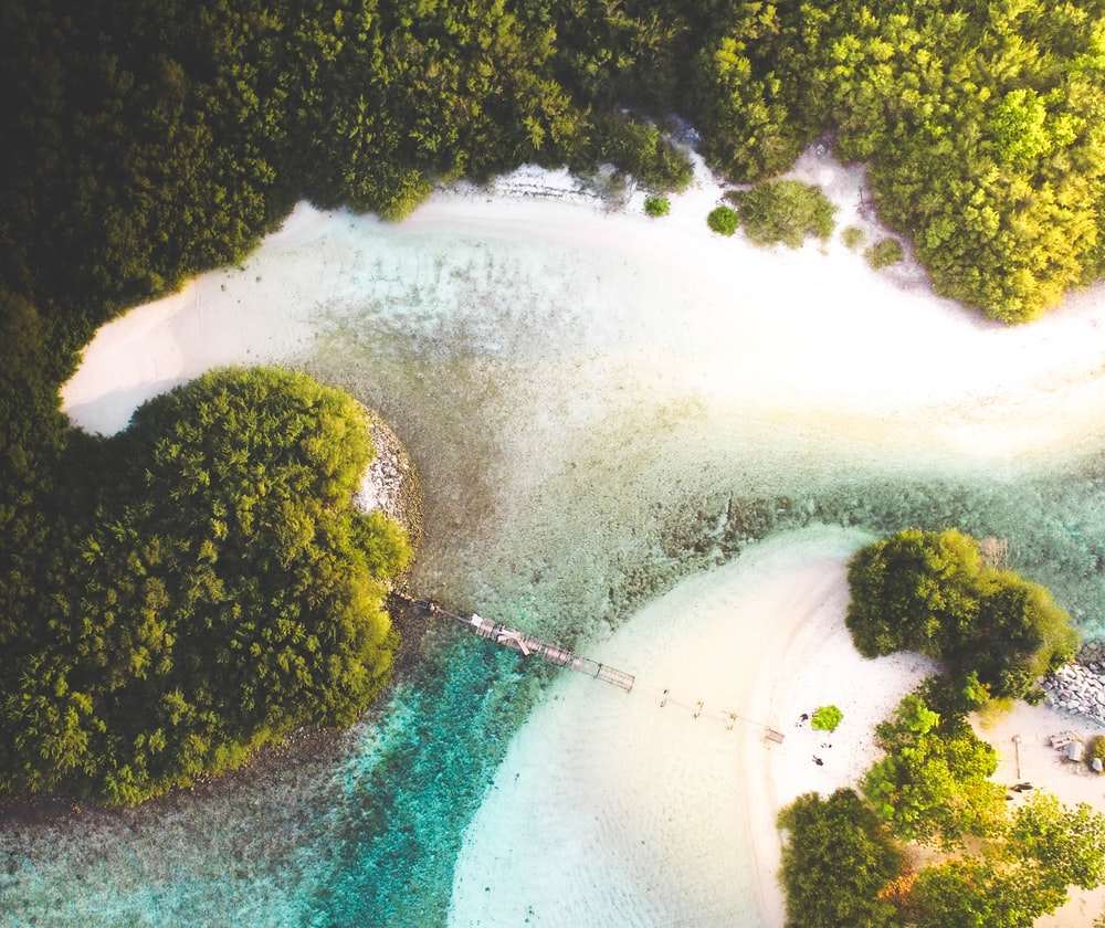 high-angle photography of body of water near trees