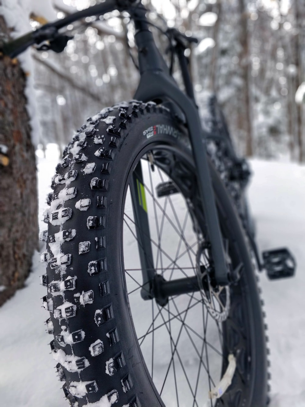 black hardtail bike leaning on tree with snow covered field