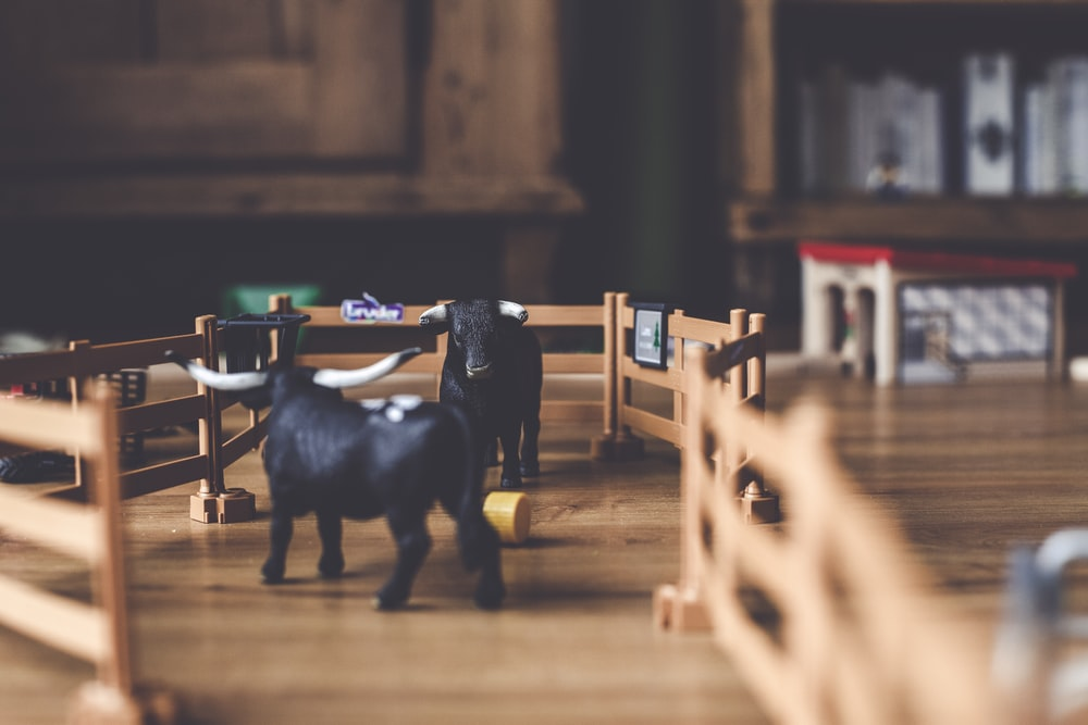 selective focus photography of two black bull figurines