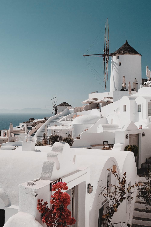 white concrete houses