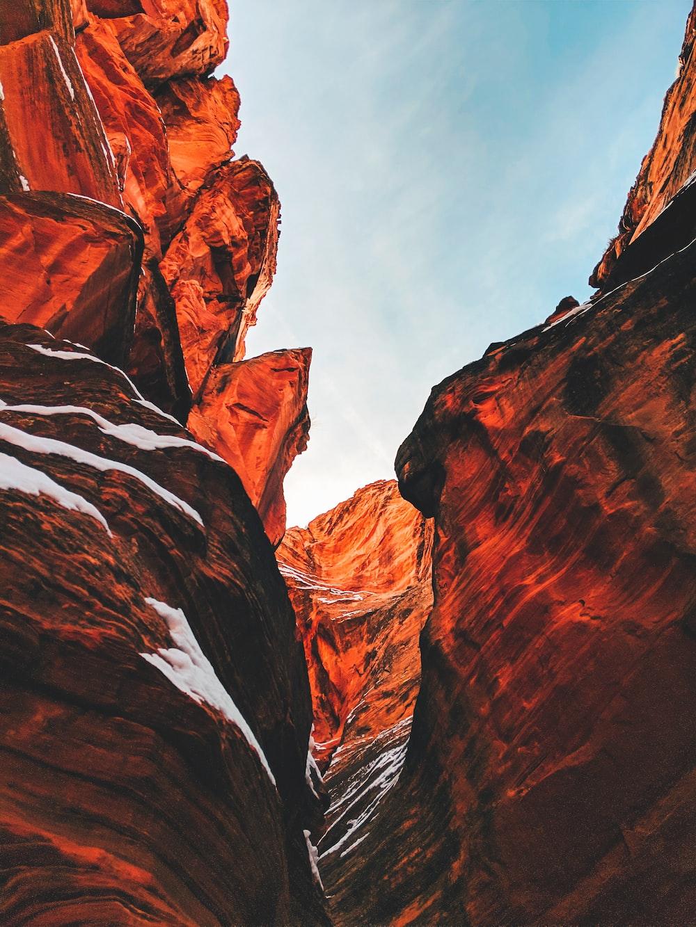 Arizona Grand Canyon during daytime