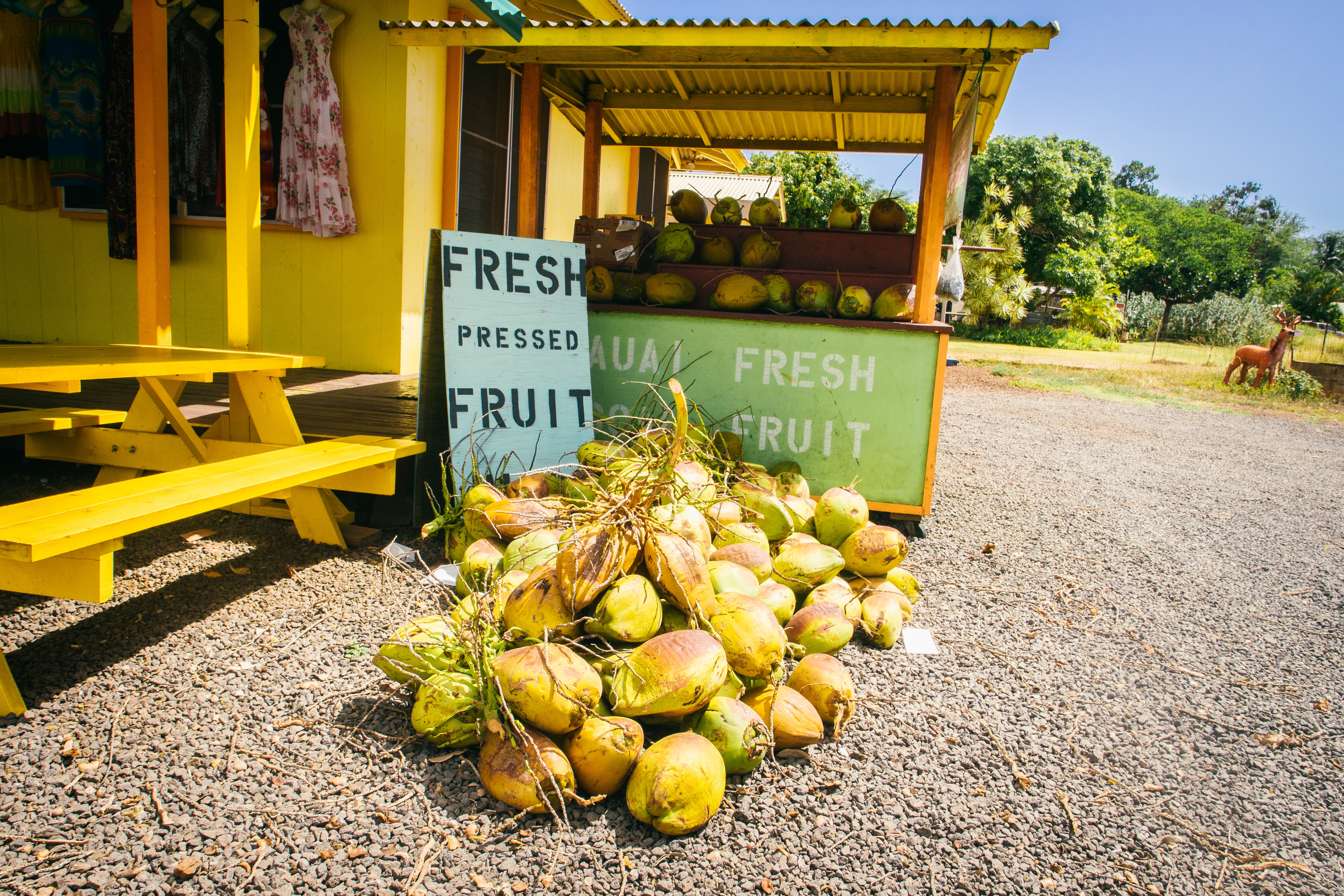 green coconut fruits beside brown picnic table