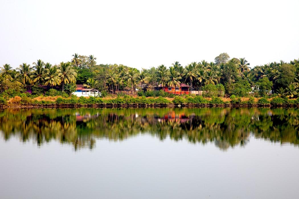 A click in Goa