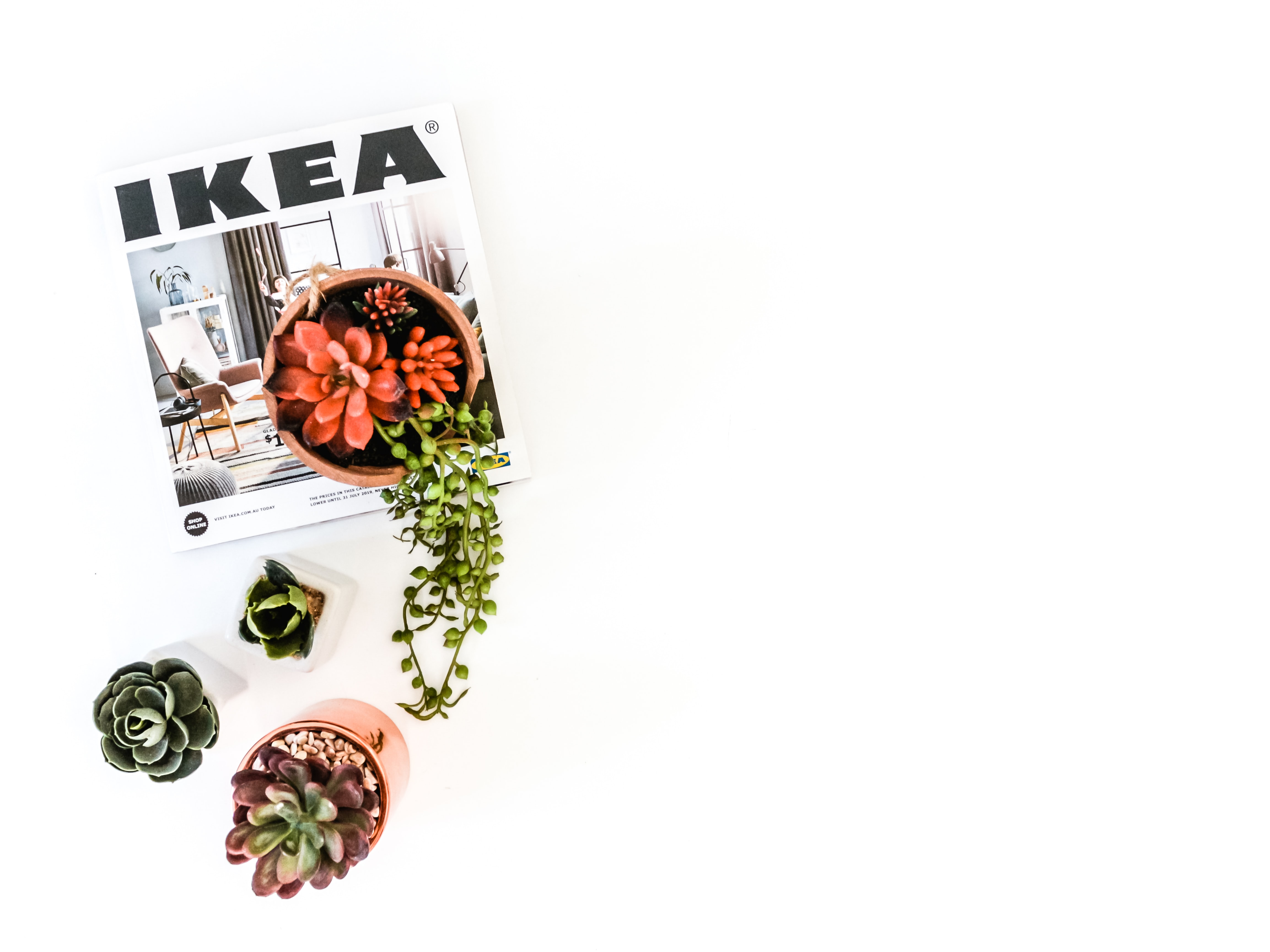 three succulent plants with Ikea book