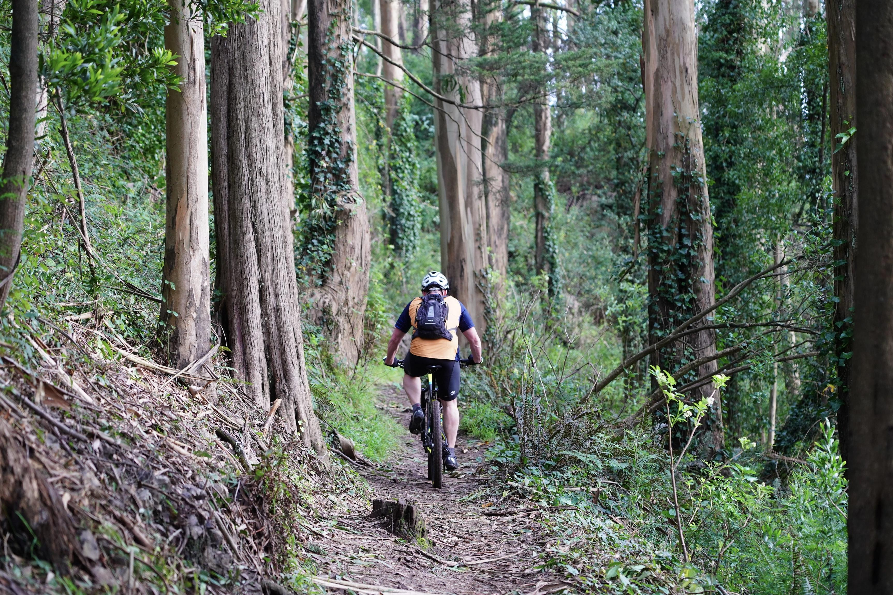 Man biking through the forest