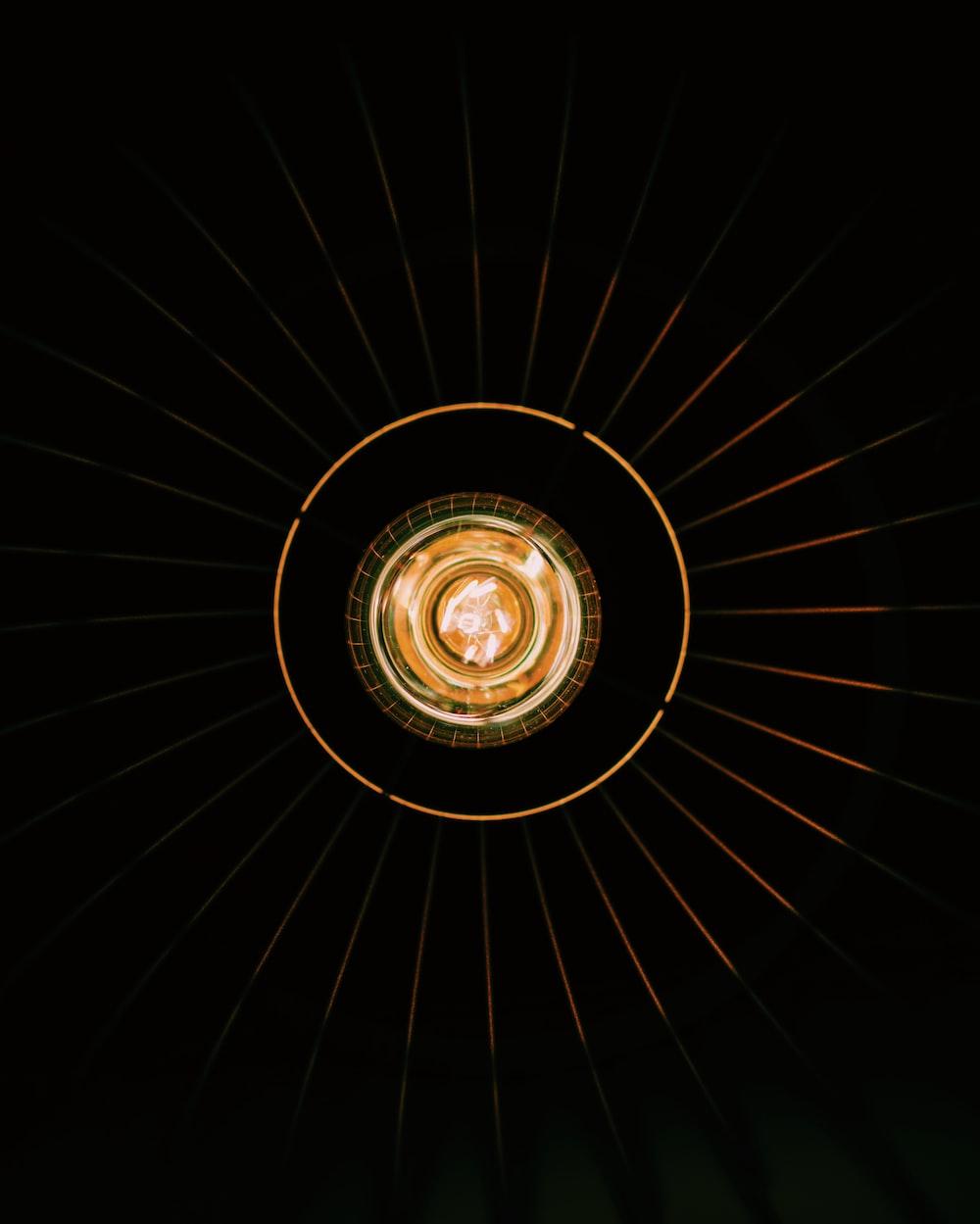 selective focus photo of bulb