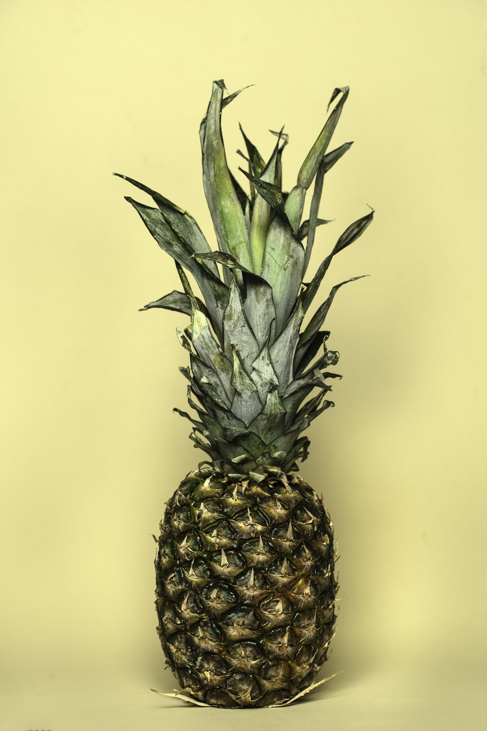 yellow and green pineapple