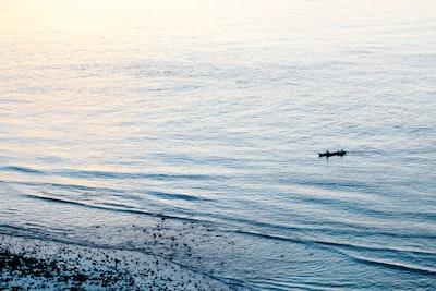 black stick floating on body of water during daytime timor-leste teams background
