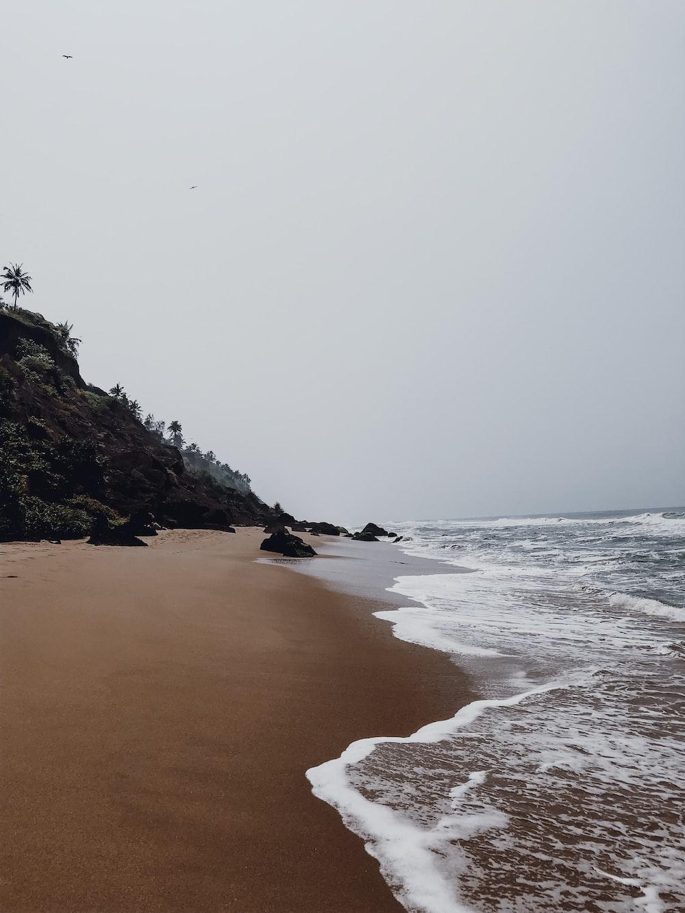 photo of shoreline during daytime