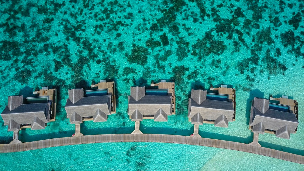 aerial photography of gray houses beside body of water