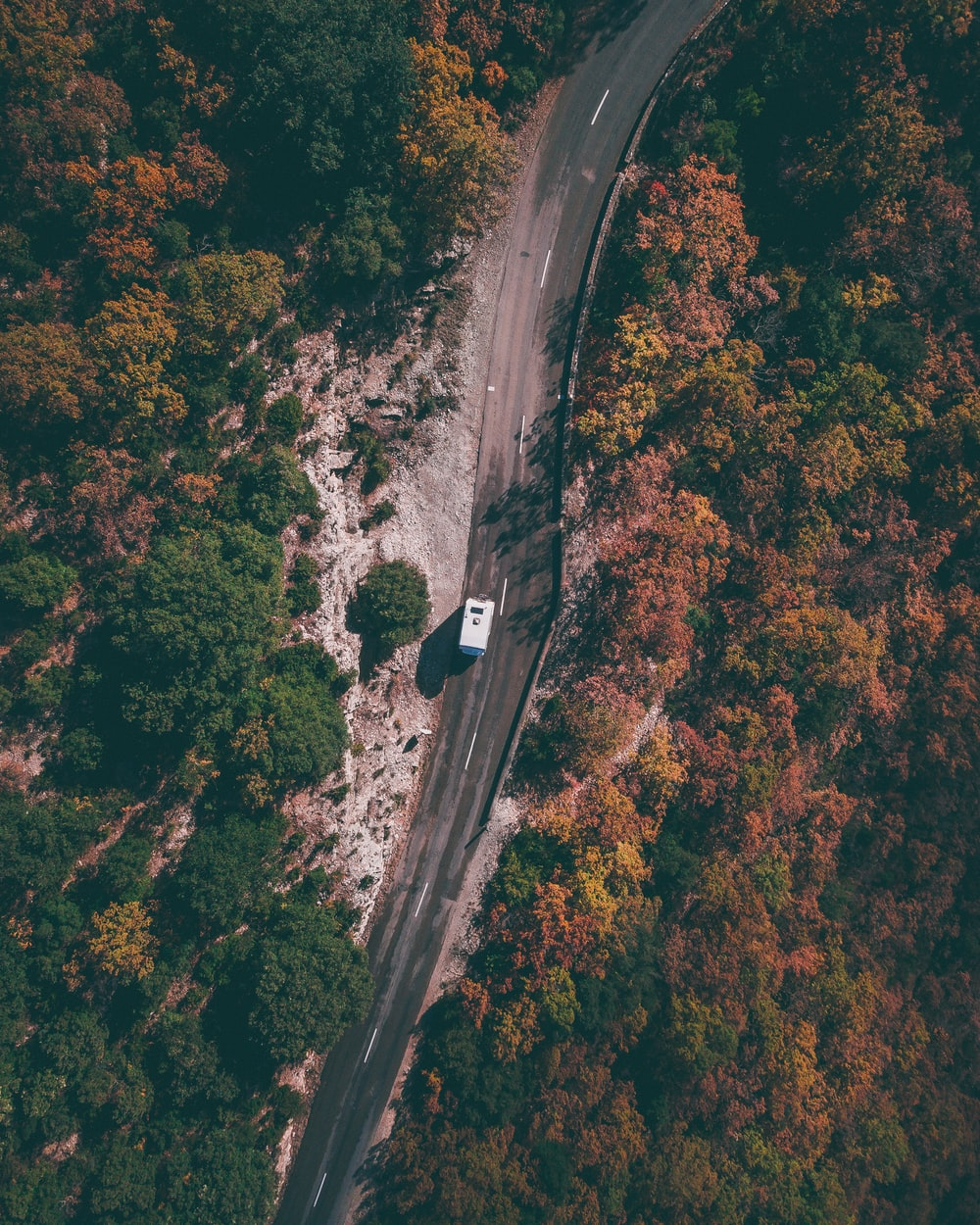 aerial photography of white car passing by forest