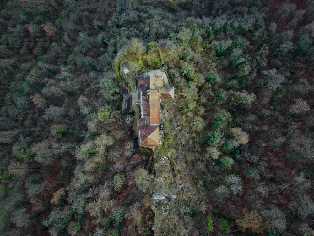 aerial photography of brown house in middle of woods