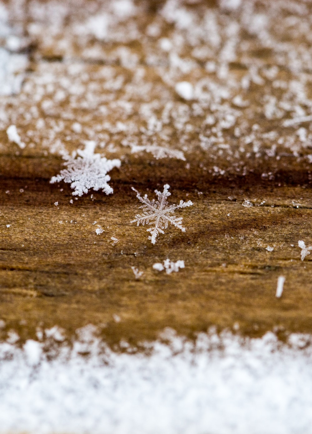 snowflakes on ground