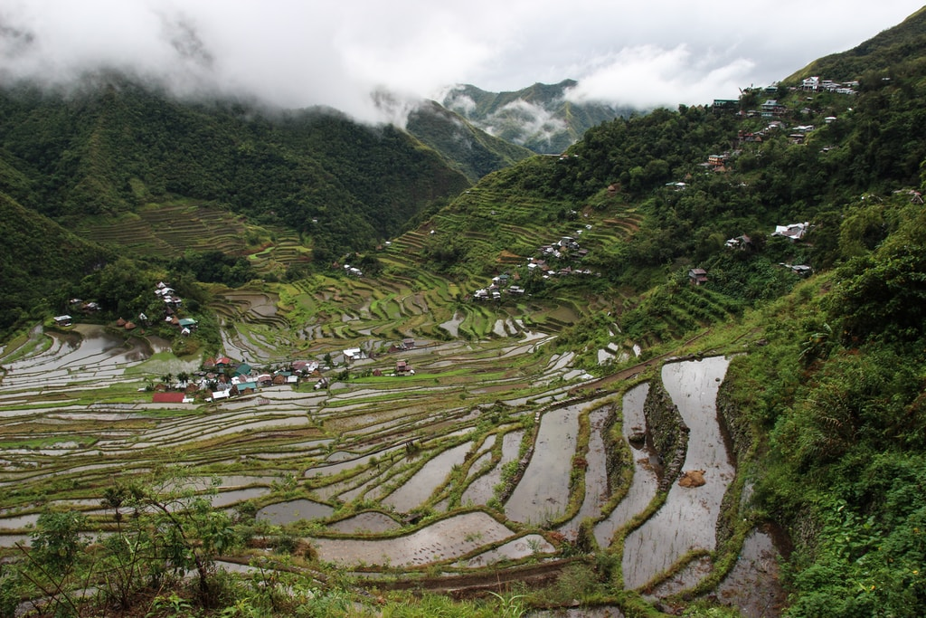 b1 gang setting for the book 6, rice terraces view during day