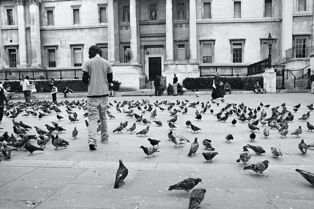 grayscale photo of man standing surrounded by pigeons
