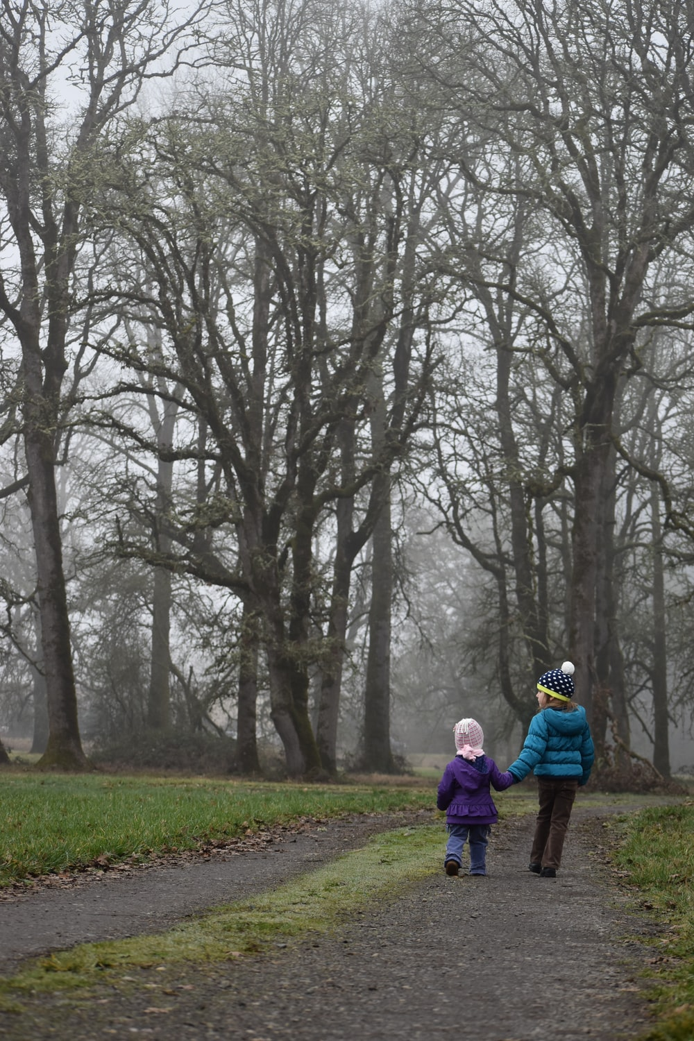 two children surrounded by withered trees
