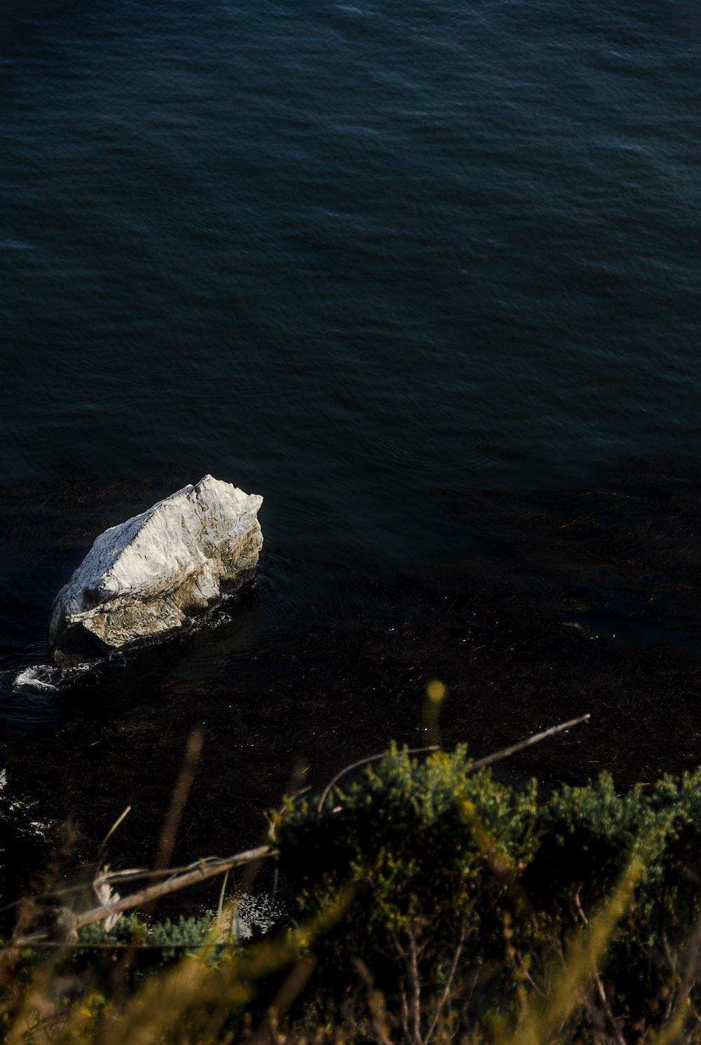 grey rock on water
