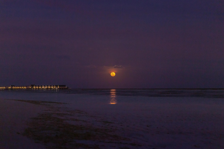 shore during nighttime
