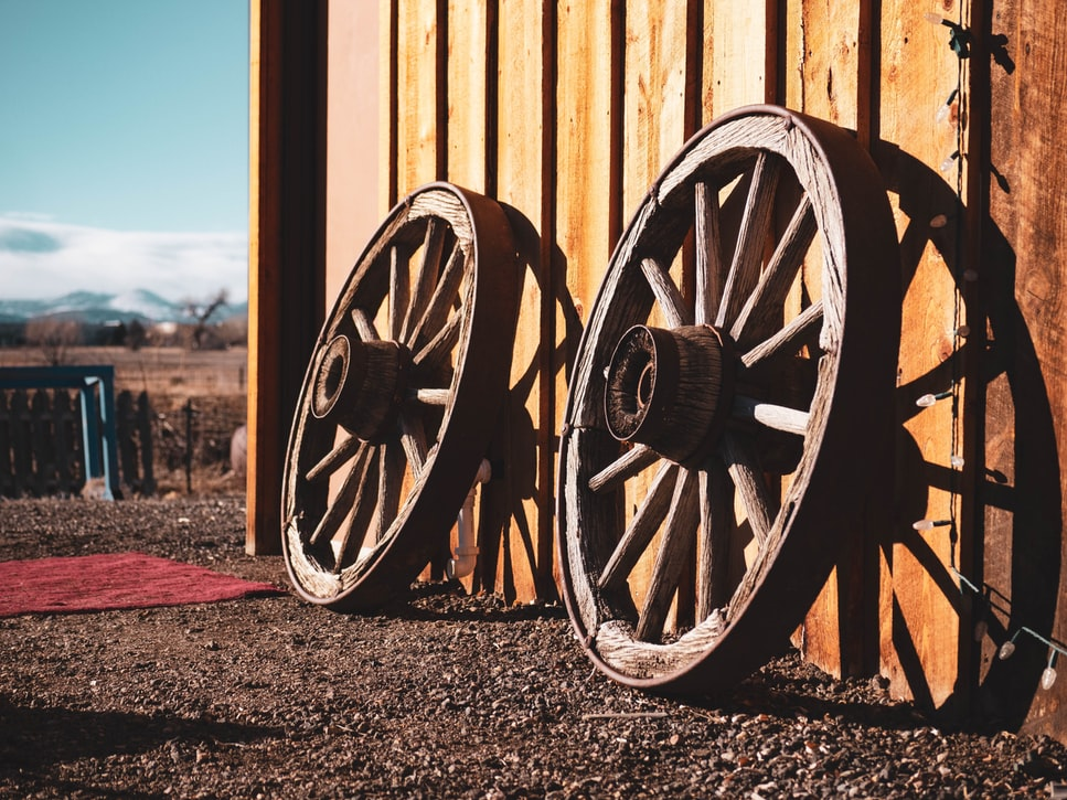 The dildo was invented about 15,000 before the wheel.