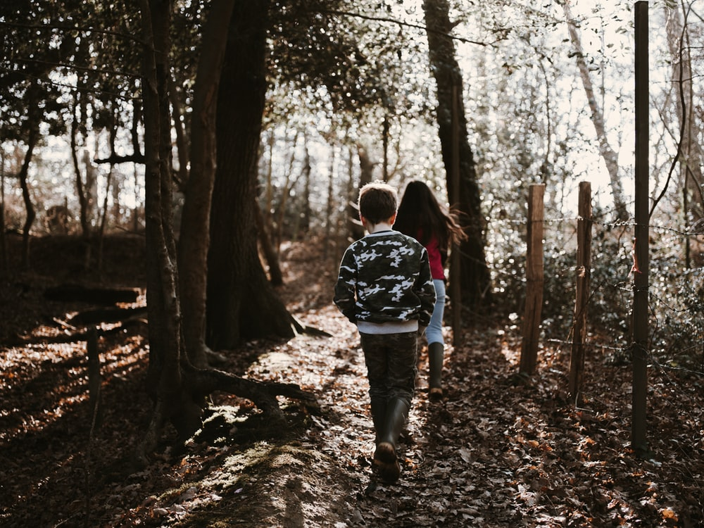 two children walking on forest during daytime