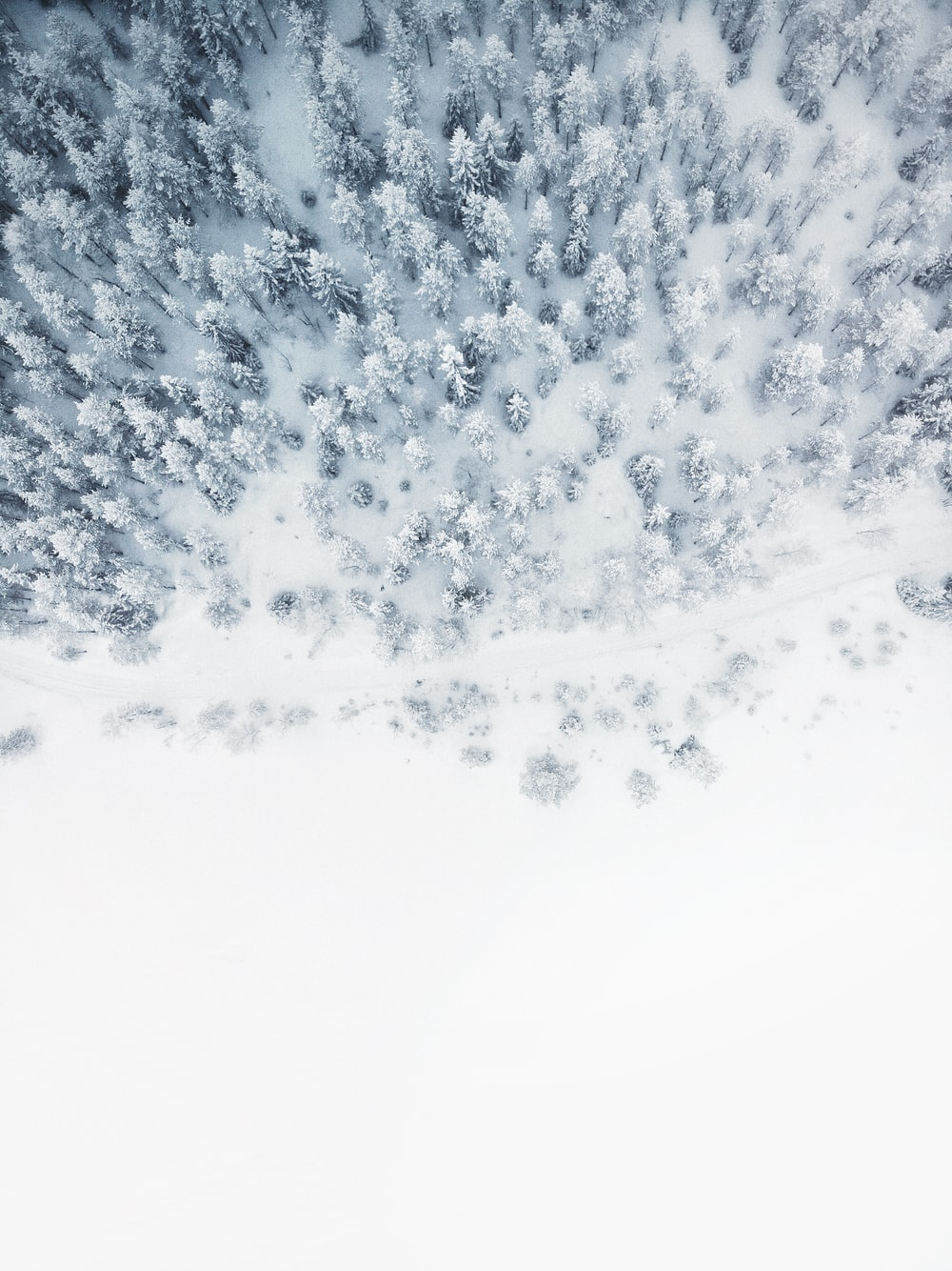 aerial photo of snow covered tree lot