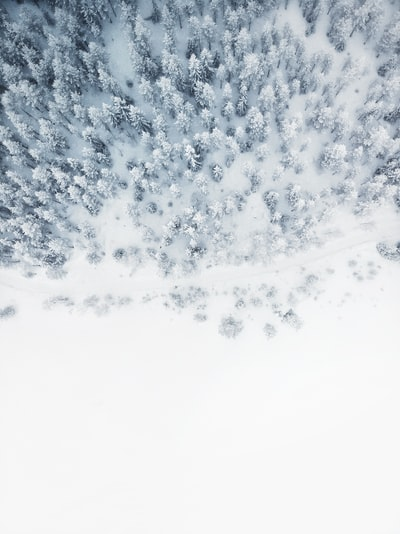Cold white winter landscape from above