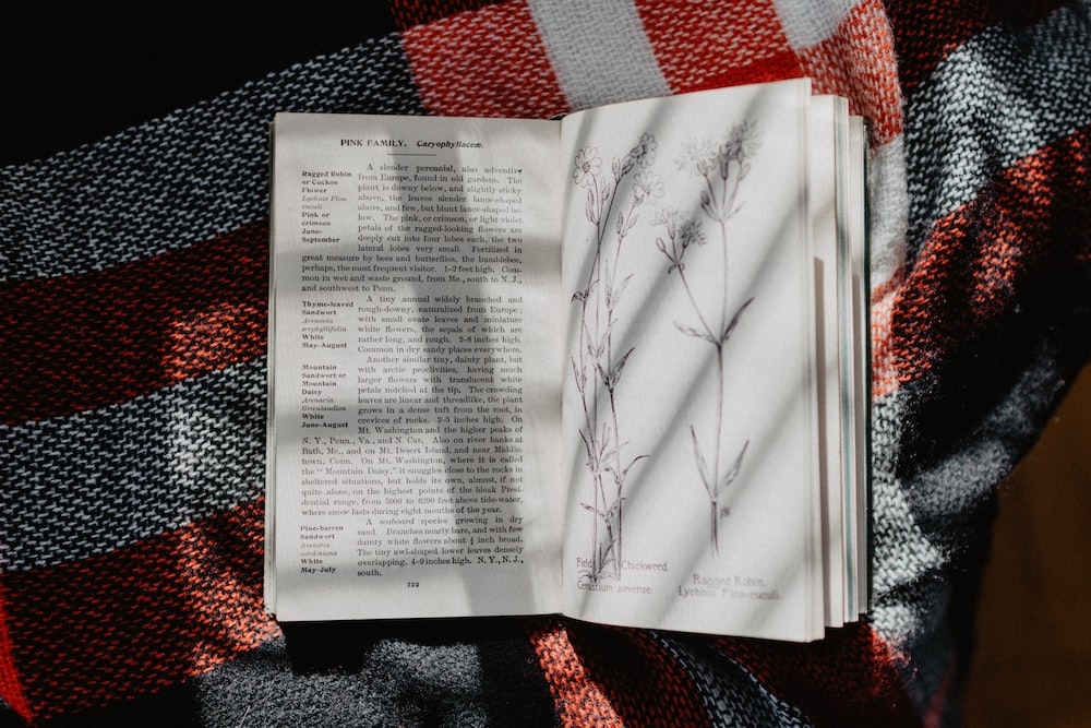 white and black labeled book on white, red, and black plaid textile