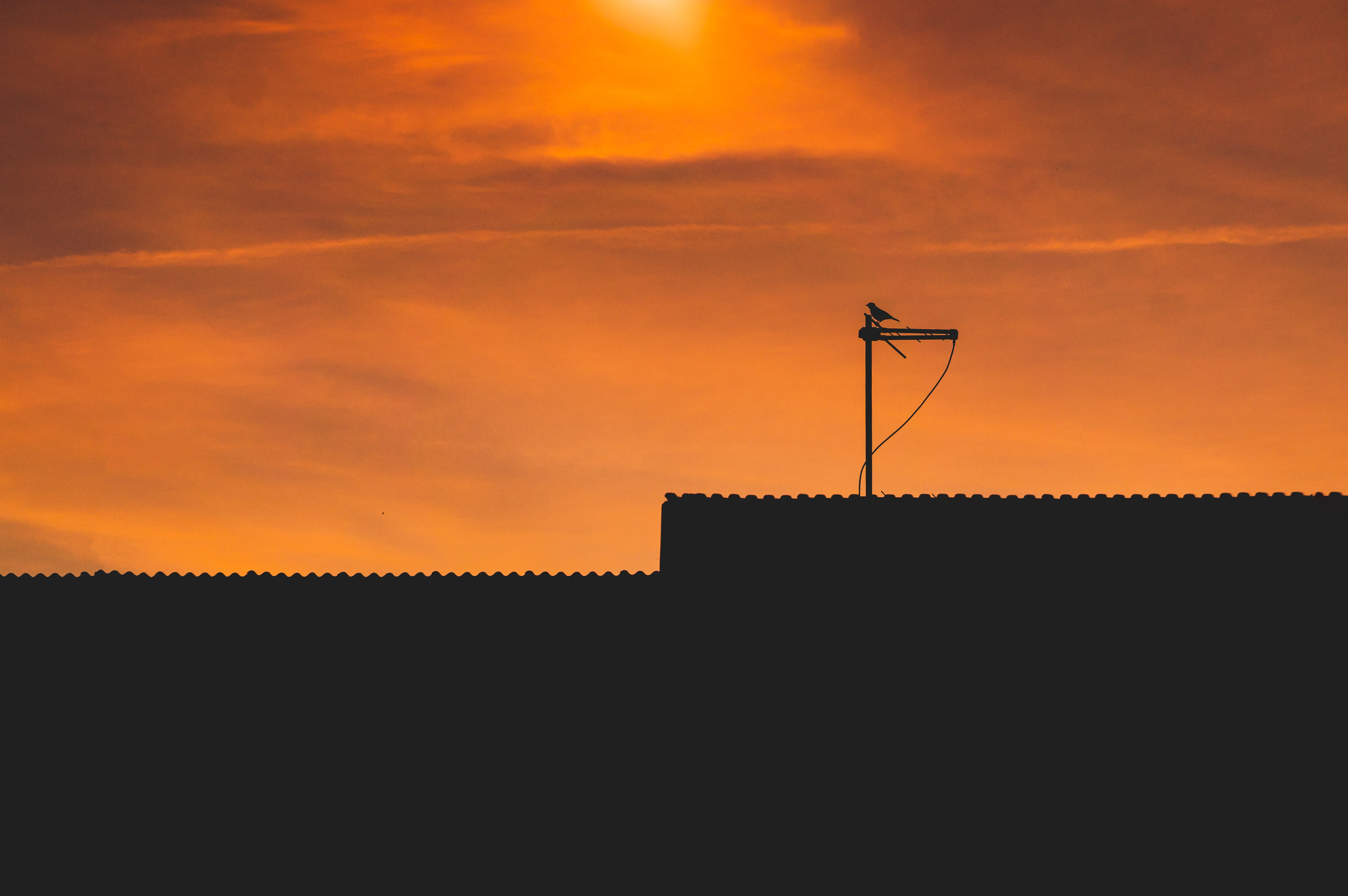 silhouette of antenna on roof